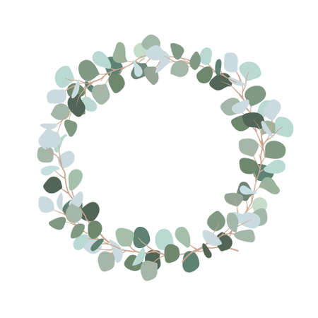 Illustration pour Festive wreath of branches with bluish leaves. Silver dollar eucalyptus wreath with place for text for wedding, invitation. Botanical plant. Flat illustration isolated on white background. - image libre de droit