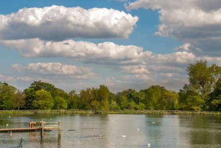 Open-air swimming is internationally famous on Hampstead Heath with the Bathing Ponds and the Parliament Hill Lido.