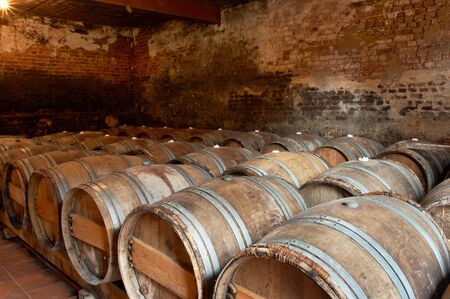 Wooden barrels in a wine cellar in a winery