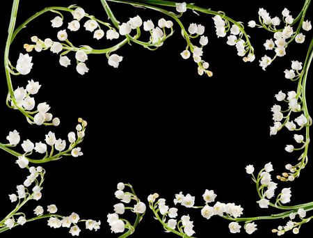 Border frame made of twigs of lilly of the valley
