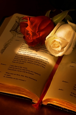 Two roses on the famous book romeo and juliet by Shakespeare, highlighting the passage about the rose what's in a name, the ideal valentine card