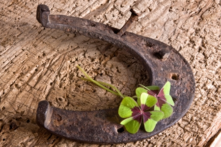 Horse-shoe and clover, vintage symbols of luck