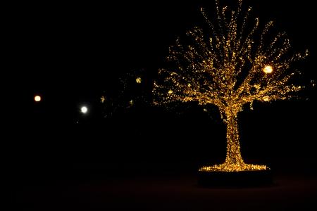 Foto de Gold lights Christmas Tree and dark outside - Imagen libre de derechos