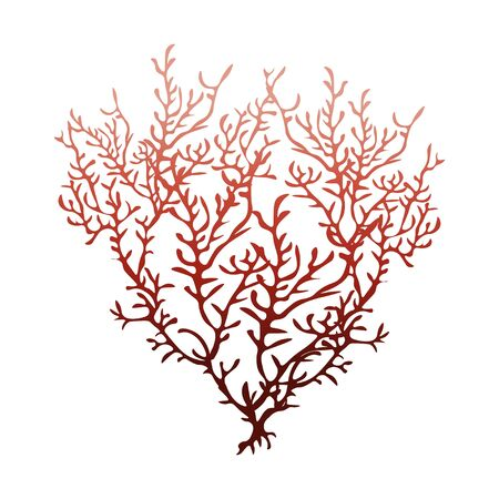 Illustration pour Red coral isolated on white background, stock vector illustration for design and decor,   postcard, business card, banner, marine theme, sticker, aquarium - image libre de droit
