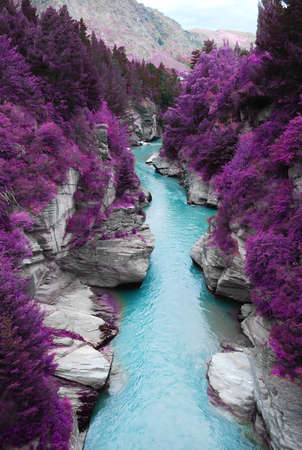 purple forest and blue stream の写真素材