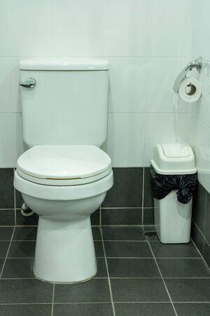Photo pour Toilet bowl and toilet paper in the bathroom - image libre de droit