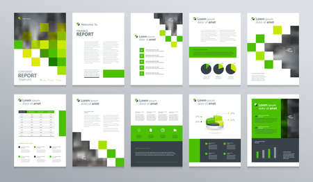 Illustration pour business company profile ,annual report , brochure , flyer, presentations,magazine,and book layout template, with page cover design and info chart element. vector a4 size for editable. - image libre de droit
