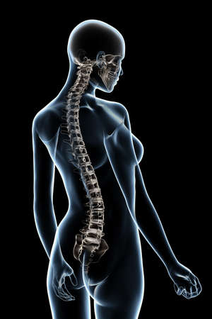 X-ray female anatomy over a black background