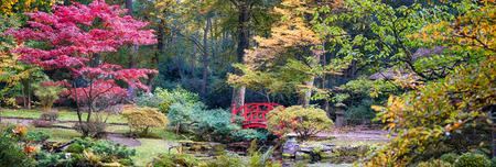 Foto de autumn panorama in Japanese park - Imagen libre de derechos