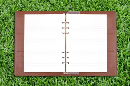 Open diary on green grass background