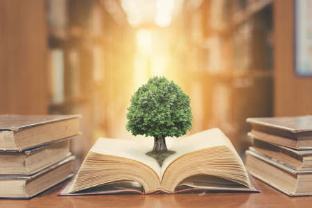 Photo for World philosophy day concept with tree of knowledge planting on opening old big book in library full with textbook, stack piles of text archive and blur aisle of bookshelves in school study class room - Royalty Free Image