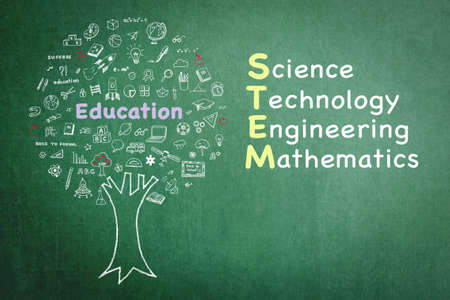 STEM education tree for Science Technology Engineering Mathematics doodle on green chalkboard