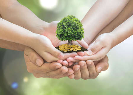 Photo for Retirement planning and family investment concept with wealthy tree growing on parent - children's hands - Royalty Free Image