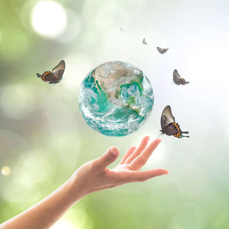 Foto de World environment day, sustainable ecology and environmental friendly concept with green earth planet on volunteer's woman hands. - Imagen libre de derechos