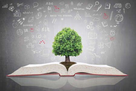 Foto de Tree of knowledge growing on open textbook with doodle for educational investment and success concept - Imagen libre de derechos
