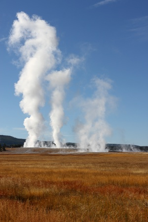 Steam rises from geysers resulting from active volcanism in Yellowstone National Park USA