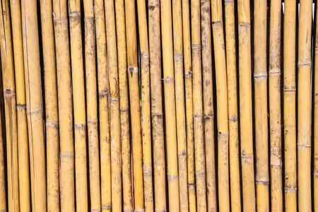 Photo pour Bamboo background - image libre de droit