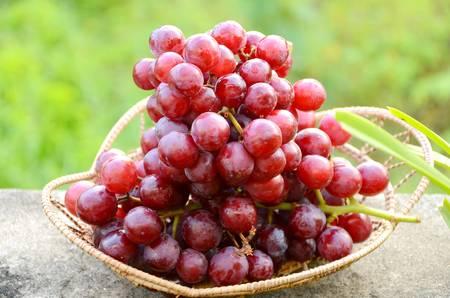 Foto für Red seedless grape  - Lizenzfreies Bild