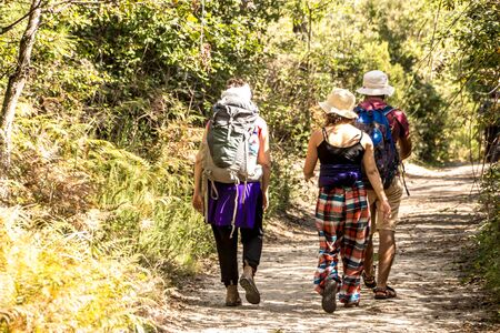 Photo for 3 GOOD friend hiking and trekking in the green forest - Royalty Free Image