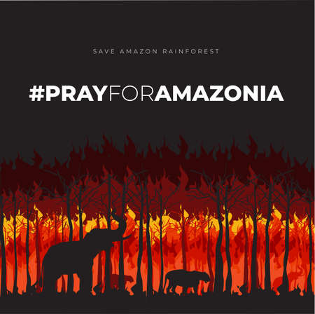 Illustration pour Save Amazonia Forest in Brazil From Fire Disaster Vector Illustration - image libre de droit