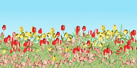 Illustration pour Landscape with red pink and yellow tulips - image libre de droit