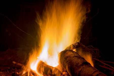 Photo pour campfire in the night for backgrounds and compositions - image libre de droit