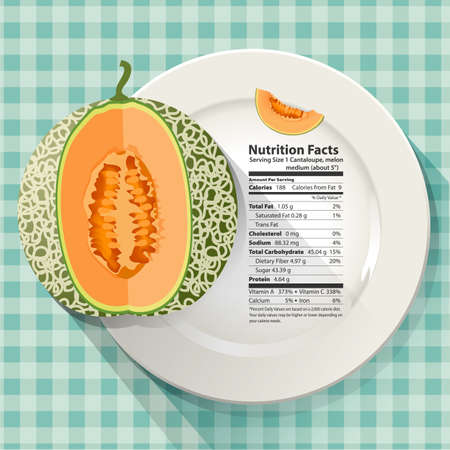 Vector of Nutrition facts in cantaloupe on white plate