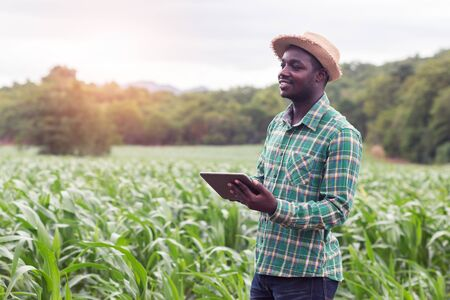 Photo pour African Farmer stand in the green farm with holding tablet - image libre de droit