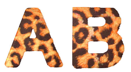 Leopard fur A and B letters isolated over white background