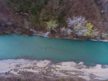 Aerial view from the air on a fallen tree in the river.