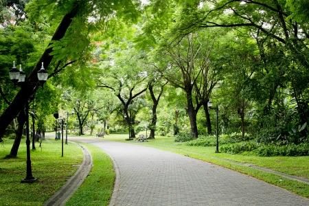 Photo pour Stone Pathway in the Green Park - image libre de droit
