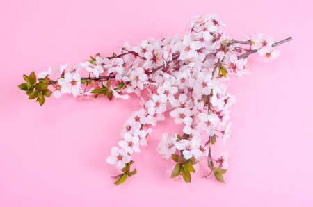 Photo for Branch with delicate white and pink flowers - Royalty Free Image