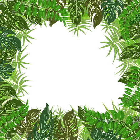 Illustration for Trendy tropical leaves nature vector poster background - Royalty Free Image