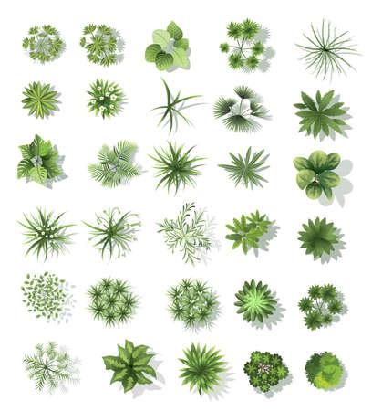 Illustration pour Set of treetop symbols, for architectural or landscape design, for map. - image libre de droit