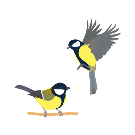 Illustration for Vector illustration of birds on white isolated background. - Royalty Free Image