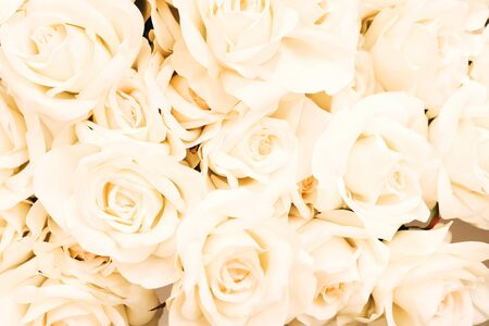 Photo for White cream-colored ivory artificial floral background for different design purposes. Concept of spring, mother's day, womens day 8 march, wedding wallpaper. Selective focus - Royalty Free Image