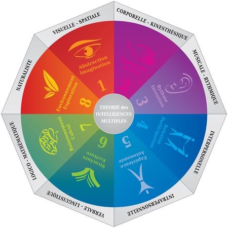 Illustration for Gardner's Multiple Intelligences Theory Diagram, Coaching and Psychology Tool - English Language - Royalty Free Image