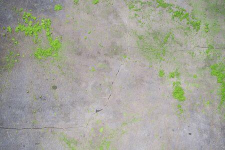 Photo pour unfocused japanese matcha green tea powder on concrete background, top-view, close-up. Above - image libre de droit