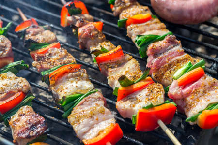 Photo pour Close up of delicious chicken breast on wooden skew with fresh vegetables, garlic, paprika fried on mangal barbeque grill and smoke - image libre de droit