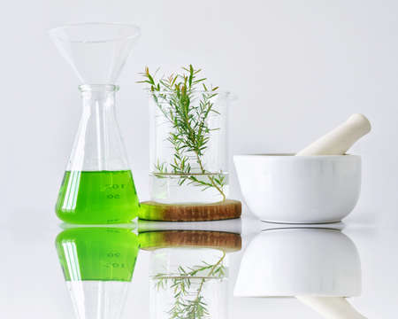 Photo pour Natural organic botany and scientific glassware, Alternative herb medicine, Natural skin care beauty products, Research and development concept. - image libre de droit