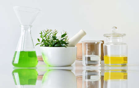 Foto de Natural organic botany and scientific glassware, Alternative herb medicine, Natural skin care cosmetic beauty products, Research and development concept. (Selective Focus) - Imagen libre de derechos