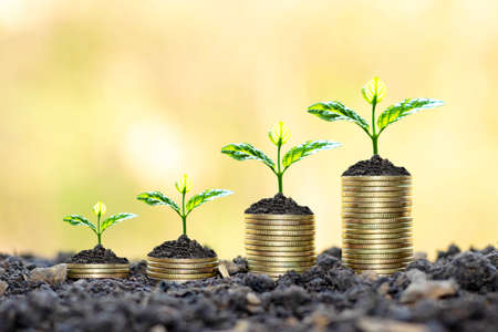 Photo pour Growing plants on coins stacked on green blurred - image libre de droit