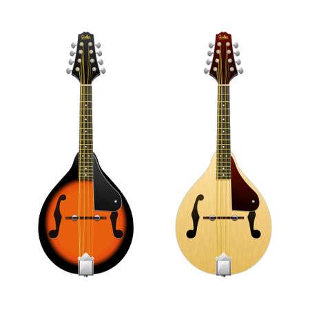 Realistic vector Mandolin isolated on white mandolin Folk music instrument Mini-guitar
