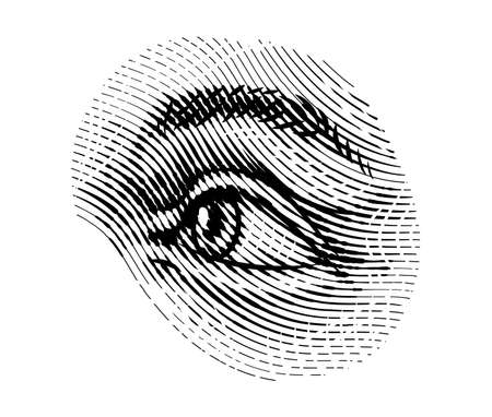 Illustration pour Human eyes eye looks away in vintage style. Female look and eyebrows. Visual System, Sensory Organ Components. Healthy exercise. Hand drawn engraved sketch subject physiology or anatomy. - image libre de droit