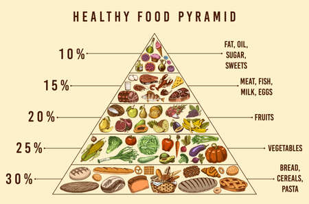 Illustration for Healthy food plan pyramid. Infographics for Balanced Diet percentage. Lifestyle concept. Ingredients for meal plan. Nutrition guide. Hand drawn in vintage style. - Royalty Free Image