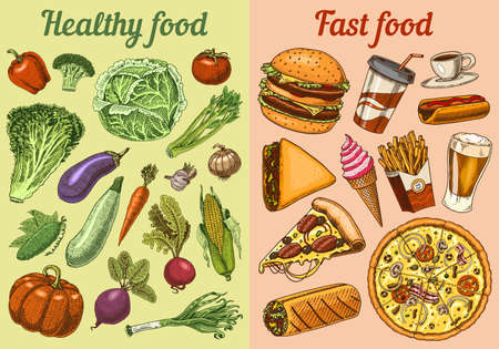 Illustration for Healthy vs junk food concept. Fruits and Vegetables or fast nutrition. Balanced Diet. Lifestyle concept. Illustration for organic shop or farm market. Hand drawn Ingredients in vintage style. - Royalty Free Image