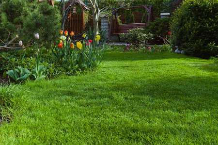 Photo pour Lawn and flowers in spring in the garden - image libre de droit
