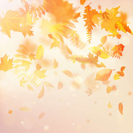 Autumnal foliage fall and poplar leaf flying in wind motion blur. EPS 10 vector file