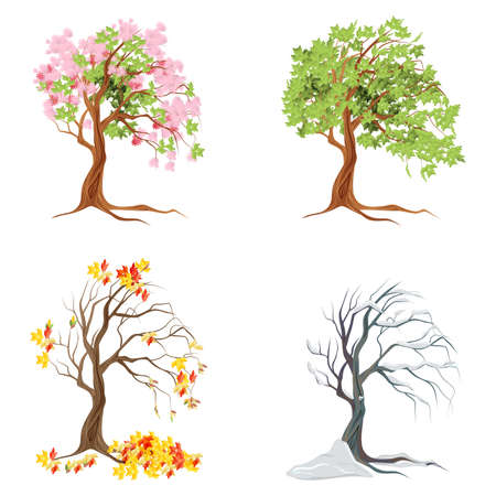 Ilustración de Four seasons trees on white background. Summer, spring, fall and winter. - Imagen libre de derechos