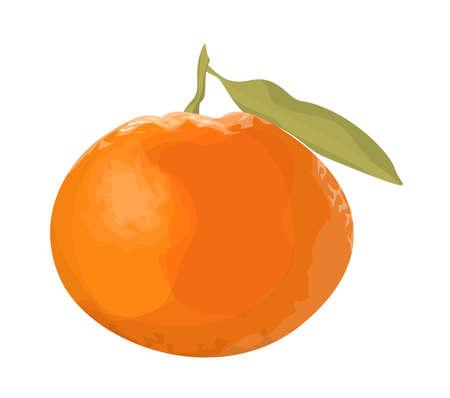 Illustration pour Isolated fresh orange tangerine on white background. - image libre de droit